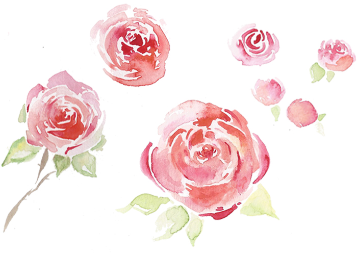 loose watercolour roses; one of the studies on the course