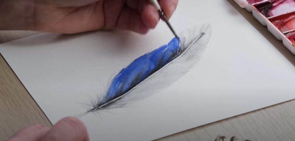 Vibrant feather colours