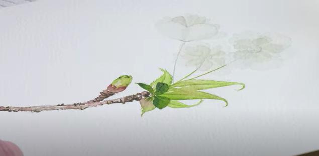 White cherry blossom painting
