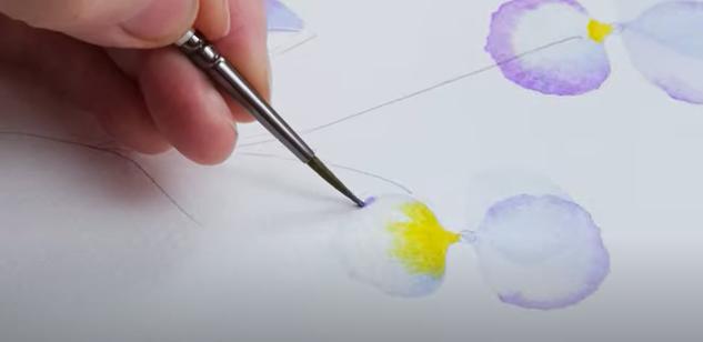Details watercolour pansies