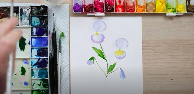 watercolour pansies