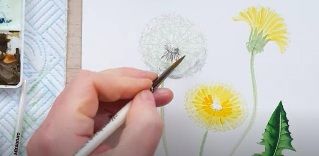 painting a dandelion clock