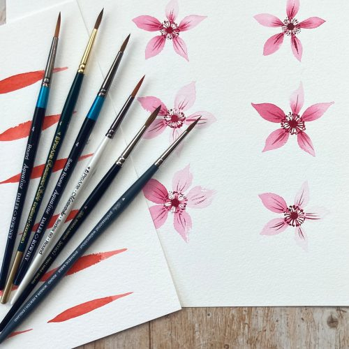 Watercolour For Beginners Pointed Round Watercolour Brush Product Review