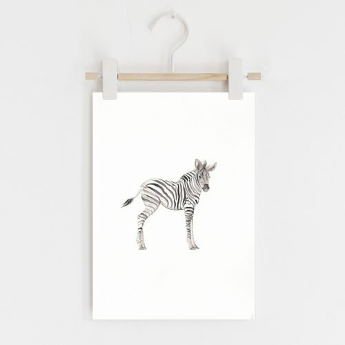 Zebra safari nursery print
