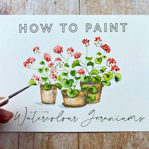 watercolour geraniums