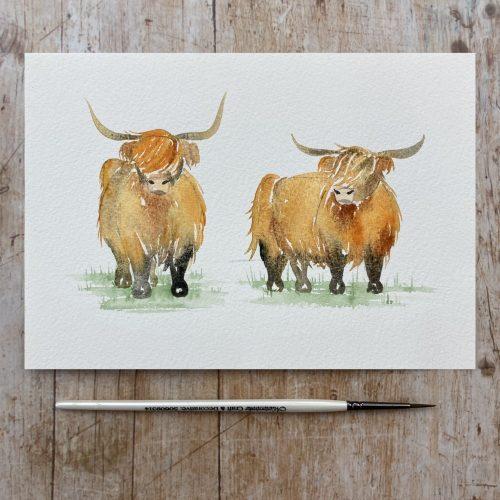 Watercolour tutorial highland cows